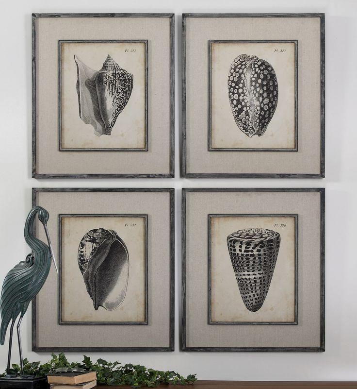 Uttermost Vintage Diderot Shells Art Set/4