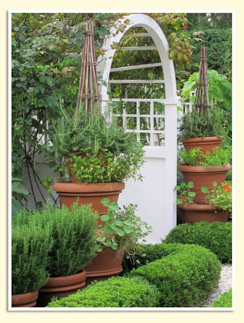Container herb garden Garden Ideas Pinterest