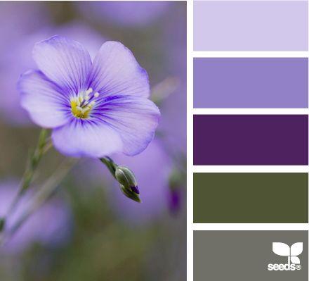 purple, green — flora tones