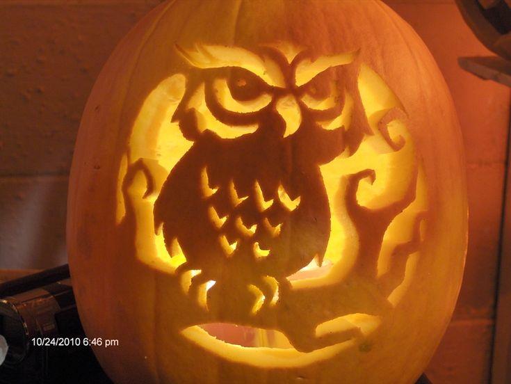 Owl pumpkin carving pinterest