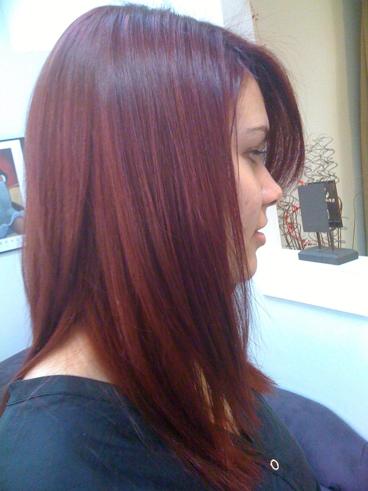 The Gallery For Gt Cherry Plum Hair Color