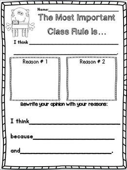 Classroom Constitution Preamble Examples