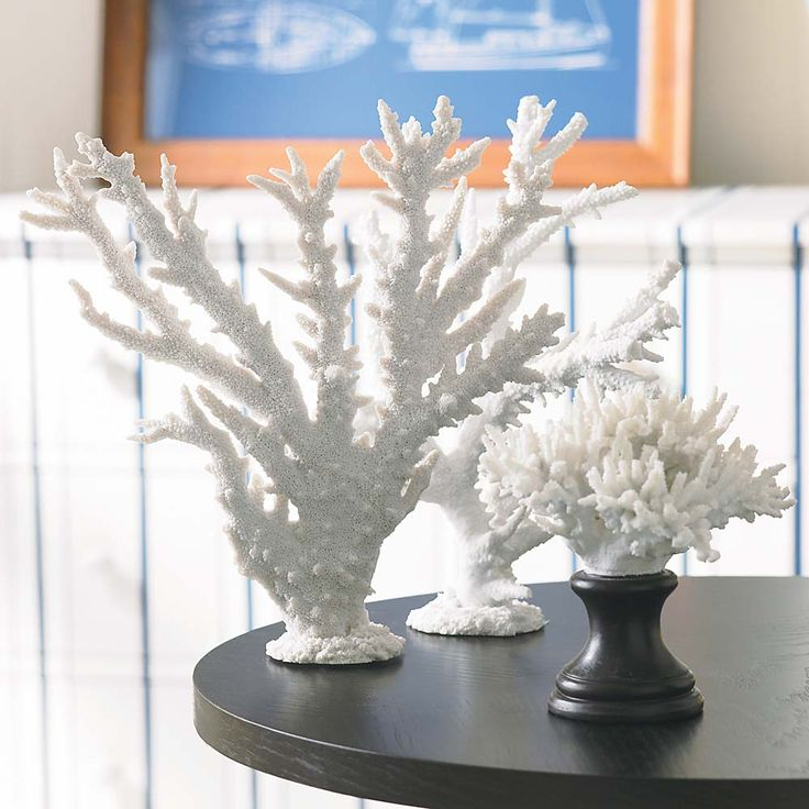 Faux coral daux coral same difference how to make for Coral decorations for home