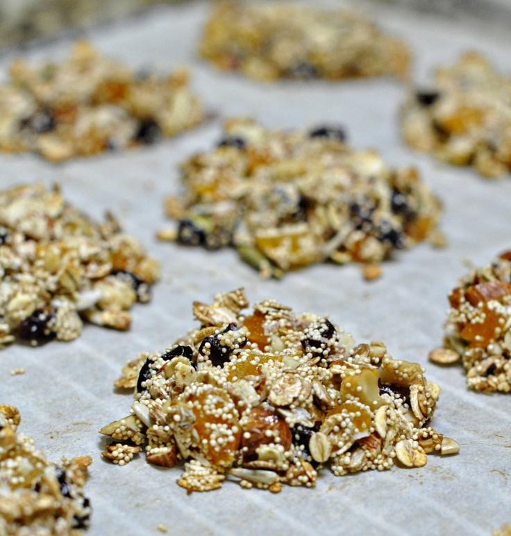 Amaranth Fruit & Nut Clusters | Kid Eats | Pinterest