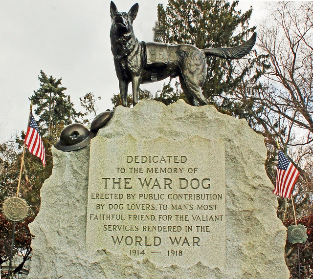 national d-day memorial reviews