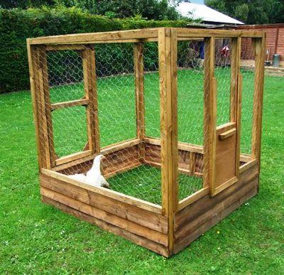 Simple chicken coop designs chicken coops pinterest for Basic chicken coop