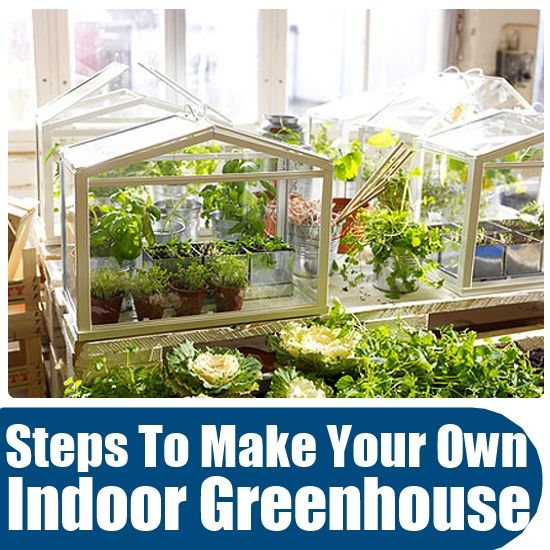 how to make your own indoor greenhouse office ideas