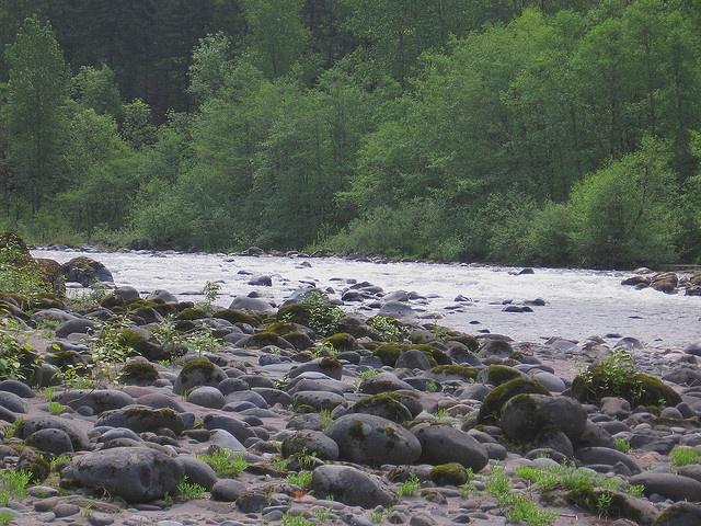 Sandy River by Roadduck99, via Flickr
