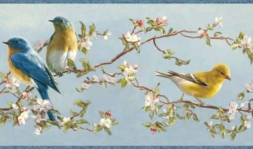 Wallpaper Border Hautman Brothers Songbird Blue Yellow Birds, Pink Wh