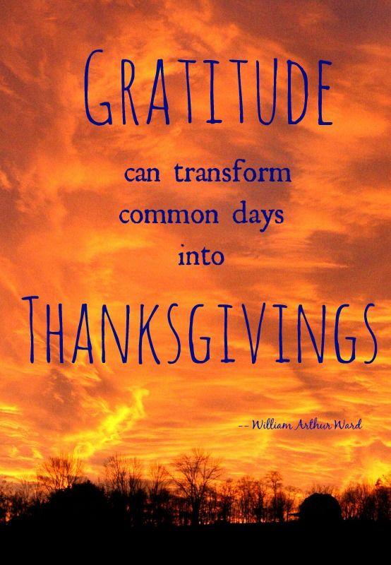Gratitude Quotes Thanksgiving Quotesgram