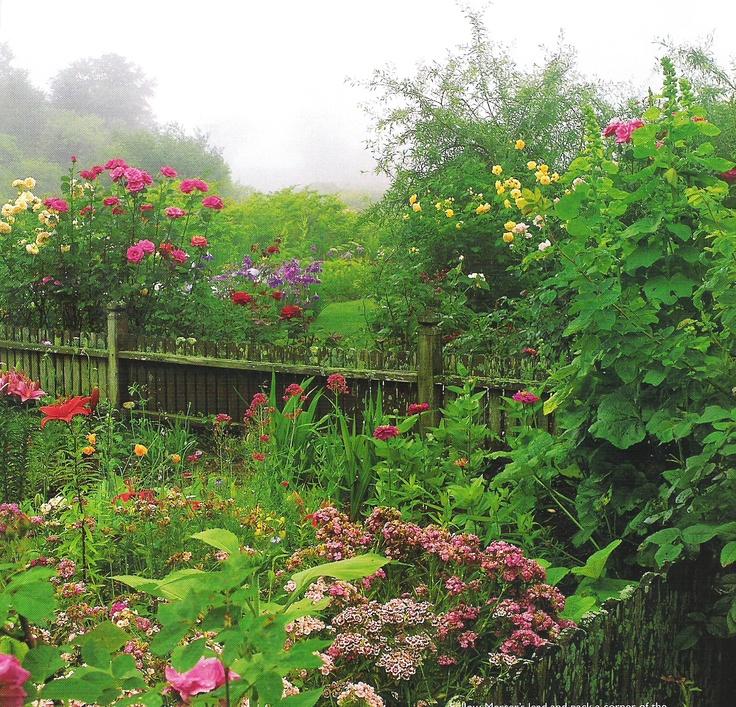 Pinterest cottage garden ideas and photos photograph cotta for Cottage garden ideas