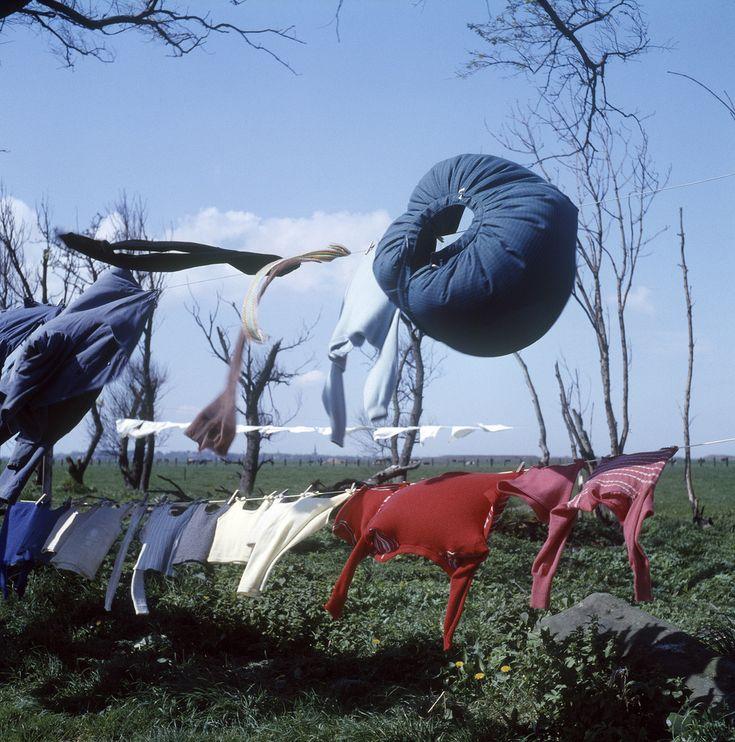Meeussen wapperend wasgoed in de omgeving van scheveningen 1950 1959