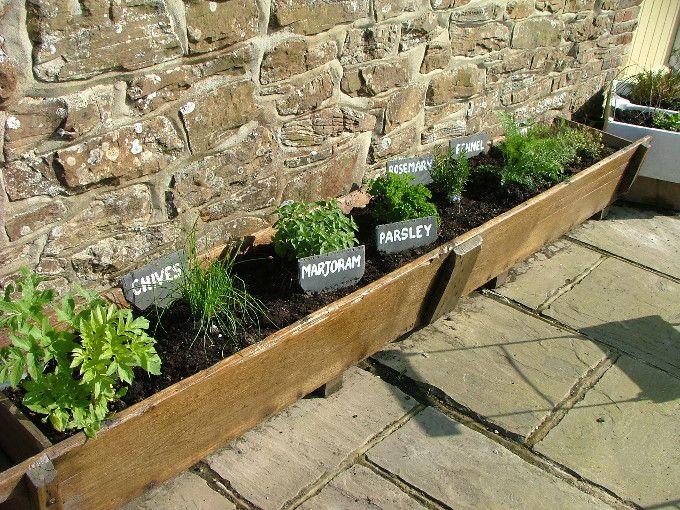 Herb Garden For The Home Pinterest
