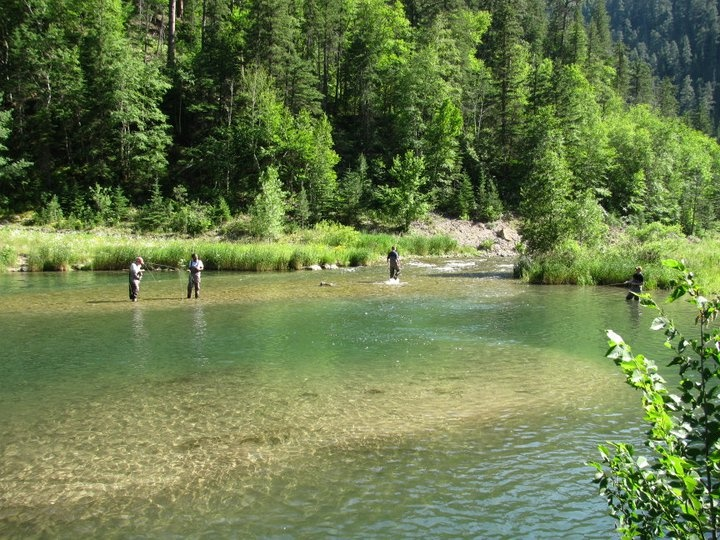 Pin by heather helfer on new home ideas pinterest for Black hills fly fishing
