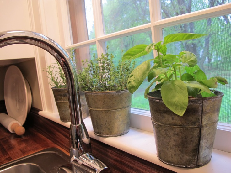 Herb pots on the window sill for the home pinterest - Windowsill herb pots ...