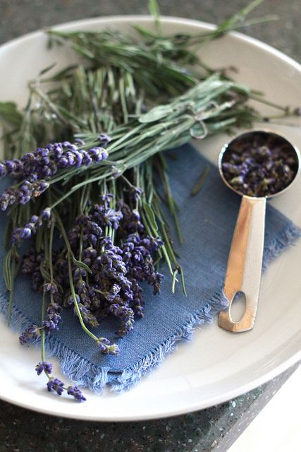 lavender simple syrup by laurenhcraig, via Flickr and recipe!