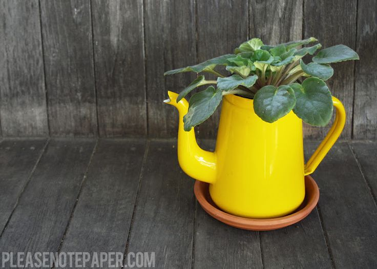 Upcycled Pitcher Planter from Please Note