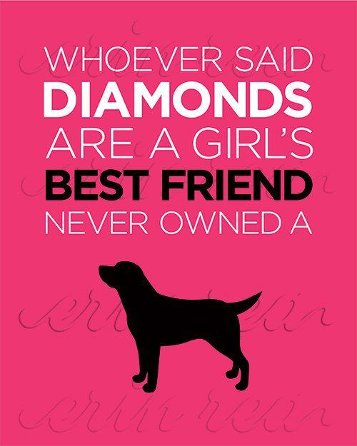 Diamonds Are A Girl S Best Friend Diamond Dogs