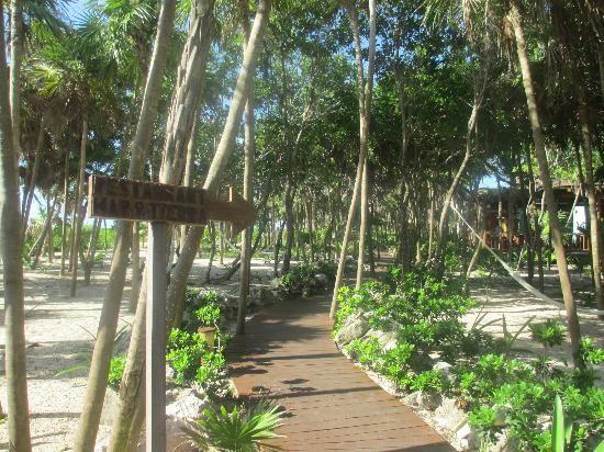 valentin imperial maya or secrets maroma