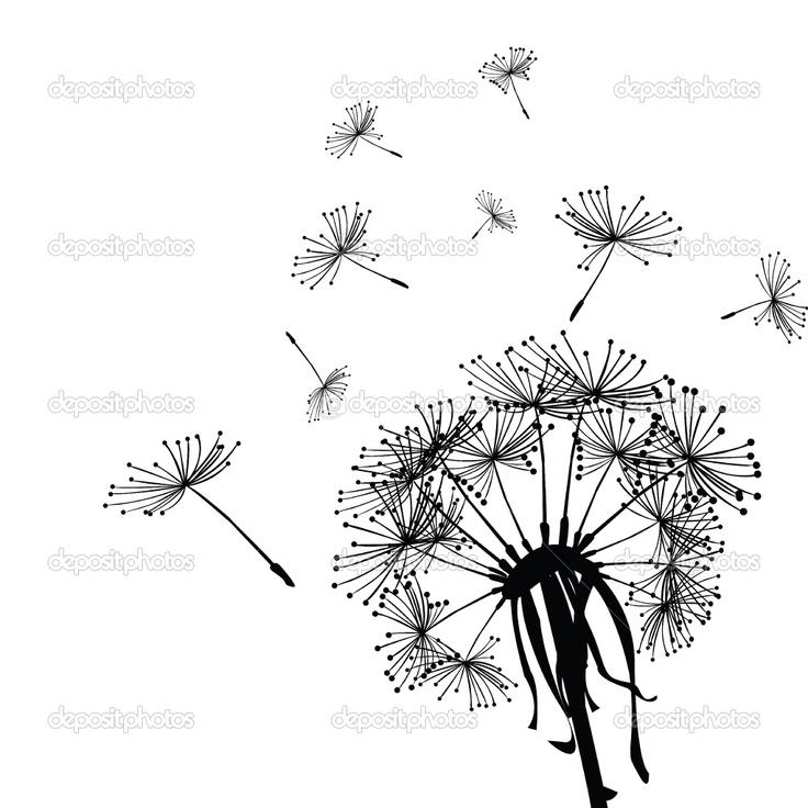 dandelion coloring pages - photo#34