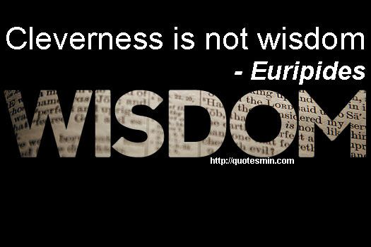 cleverness is not wisdom essay