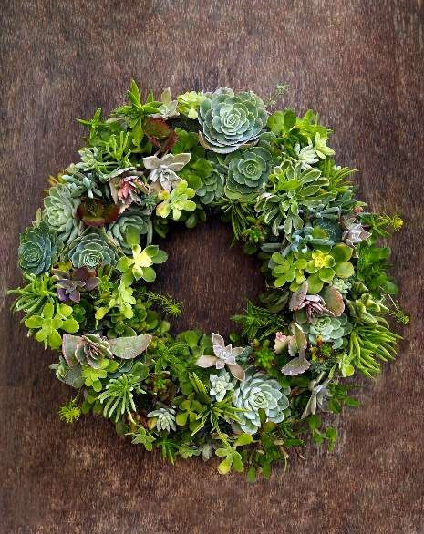 succulent wreath from Flora Grubb SF