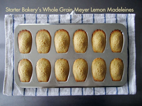 whole grain meyer lemon madeleines   a spoon to measure - sweet   Pin ...
