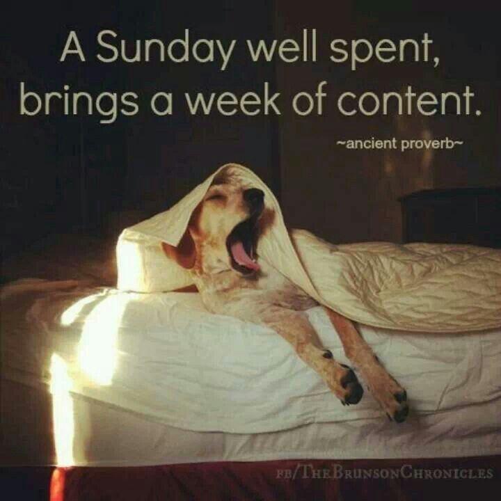 Yes! quote lazyday sundayfunday Quotes & favorite