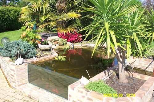 Vue sur la vitre du bassin hors sol bassin pinterest for Bassin de jardin hors sol