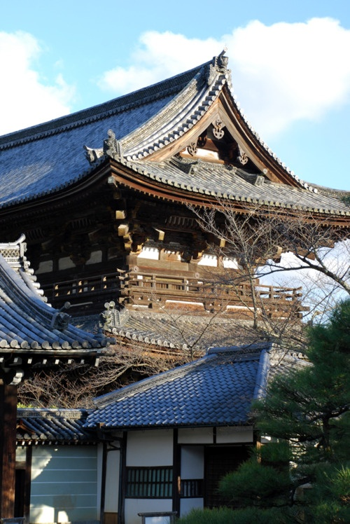 Ninna-ji, Kyoto, #japan / www.wildcanadasalmon.com #salmon #wildsalmon #canada