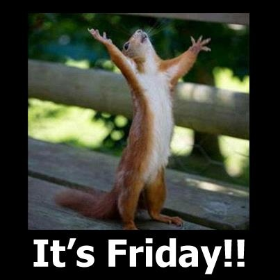 happy friday funny work bing images