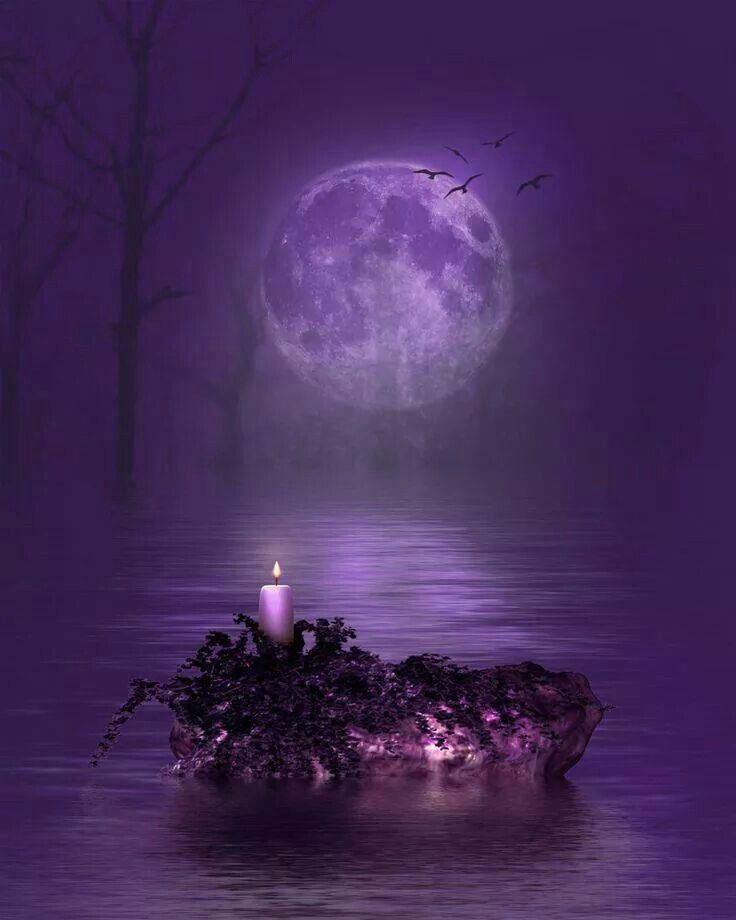 Beautiful Purple Things Pinterest