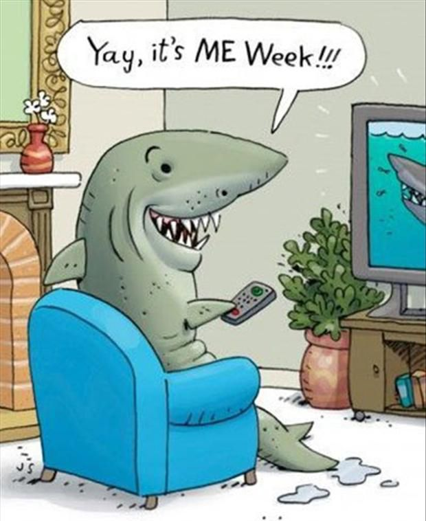 shark week, shark week comic, funny shark, funny shark week, yay it's me week, shark comic, shark in chair, shark watching tv, ocean animals