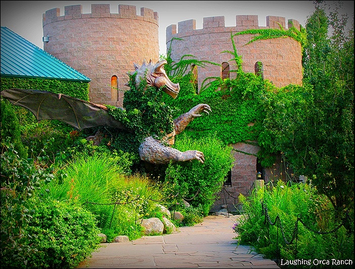 Pin by tammy martin tmld on designing the landscape - Botanical gardens albuquerque new mexico ...