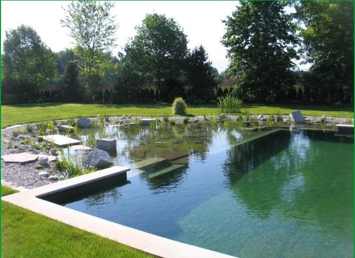 Natural pools that look like swimming ponds how home for Swimming pools that look like ponds