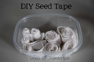 DIY seed tape from toilet paper   For the Garden   Pinterest