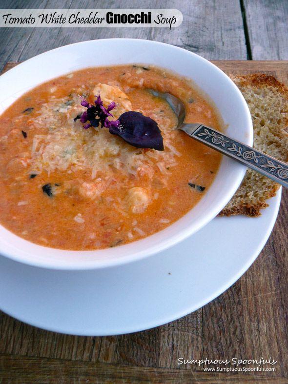 Gnocchi In Tomato Broth Recipe — Dishmaps