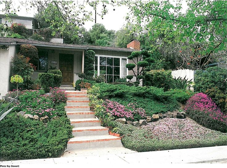 Xeriscaped Backyard Design : No front lawn, just a beautiful xeriscaped design May need to tweak