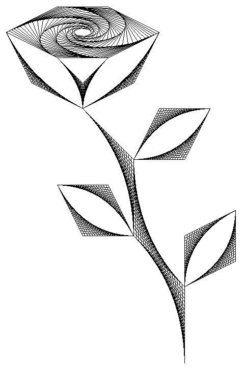 Flower Drawings Black And White Random