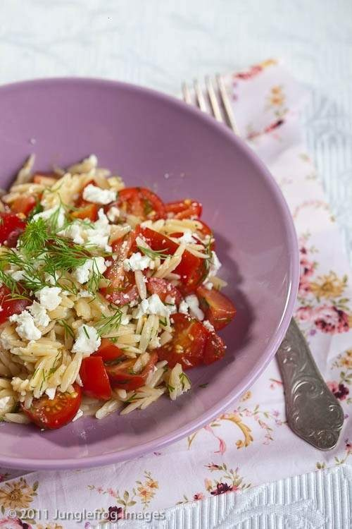 orzo with tomato feta and dill