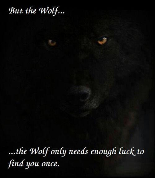 Wolf quotes tumblr