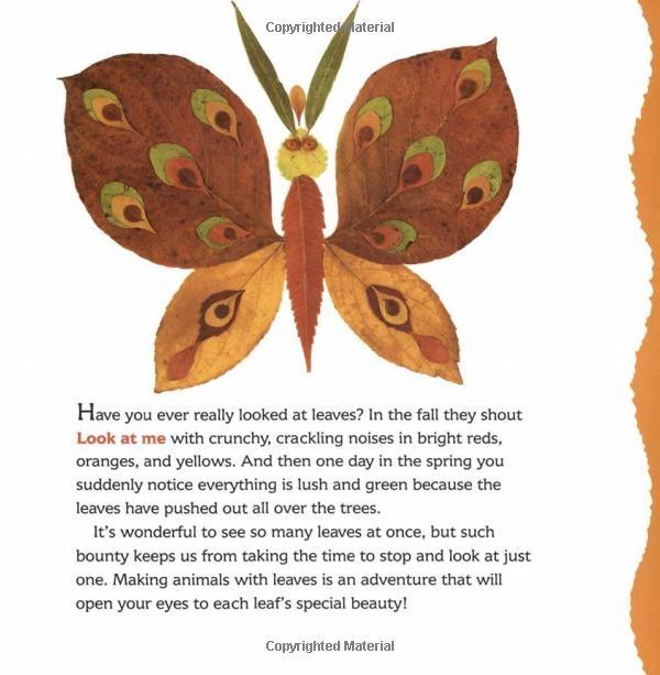 Look What I Did with a Leaf! (Naturecraft): Morteza E. Sohi: 9780802774408: Amazon.com: Books