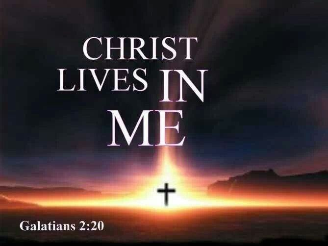 Galatians 2:20 | Scripture | Pinterest Faith In God Quotes And Sayings