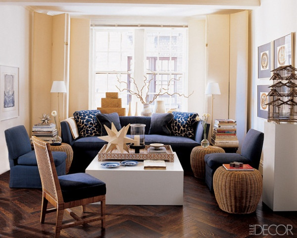 Blue Couch Living Room Pinterest