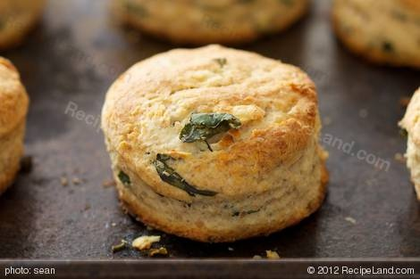 Fantastic idea and very easy -Parmesan Scones