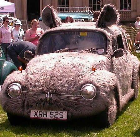 VW Mouse Modification