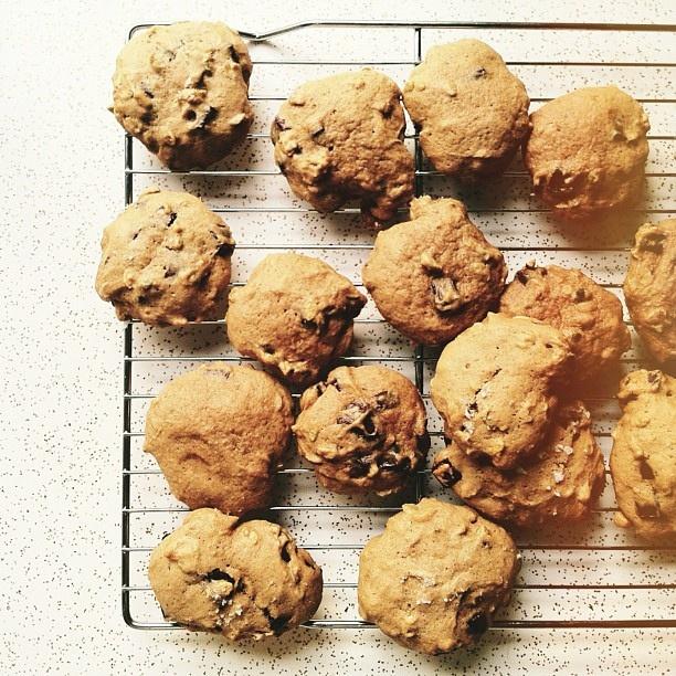 Giant Salted Pumpkin Chocolate Chunk Cookies Recipe — Dishmaps