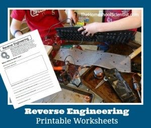 Reverse Engineering Printable Worksheets- TheHomeschoolScientist.com