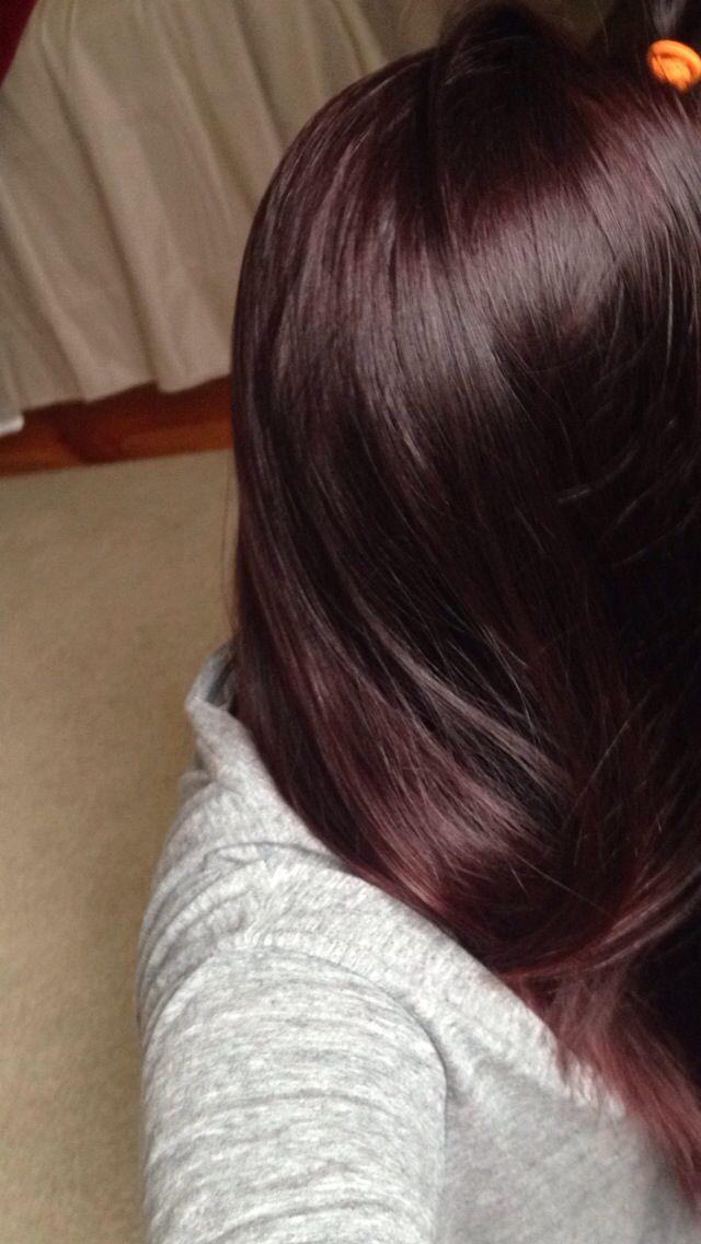 diy plum burgundy hair dark brown hairs of plum brown hair