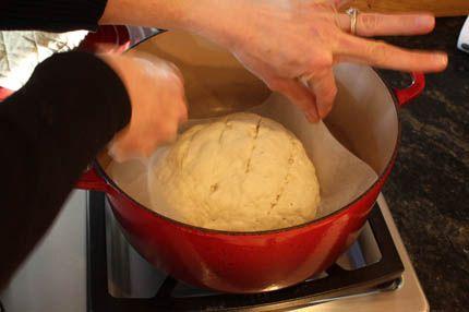 Artisan Bread in Five Minutes a Day » Gluten-Free Crusty Boule